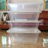 Cajas de embalaje disponibles de los PP, rectángulos de almuerzo respetuosos del medio ambiente, 500ml