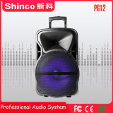 Shinco 무선 Karaoke 트롤리 Bluetooth 스피커 12 인치 이동할 수 있는 당 DJ