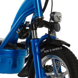 "1000W 12 "" Folding Electric Bicycle com Disk Brakes (MES-013)"