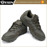 El verde militar de cuero de alta calidad zapatos al por mayor zapatillas botas tácticas