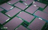 Het Carbonaat van het Lithium van de industriële/Rang van de Batterij met Uitstekende kwaliteit