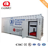 40-футовом контейнере типа портативные станции топлива для экспорта африканского рынка