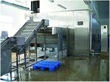 Entreposage au froid de chaîne du froid de large échelle pour le centre serveur de distribution de logistique de nourriture de lyophilisation