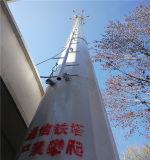 공장 원거리 통신 강철 Monopole 탑의 아름다운 외관