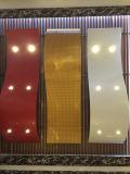 Techo de aluminio decorativo no estándar en forma