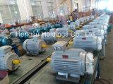 Motor eléctrico de la inducción trifásica de la CA del arrabio de Y2/Ye2/Ie2 55kw-2
