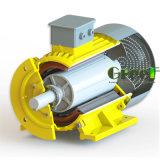 50kw générateur magnétique 20tr/min, 3 PHASE AC générateur magnétique permanent, le vent de l'eau à utiliser avec un régime faible