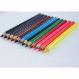 12 цветных карандашей размера Jumbo в поле бумаги