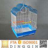 Fabrik-Preis-Papageien-Rahmen 2017