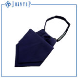 Sicherheits-Krawatten-kundenspezifischer Silk Querbinder für Frau