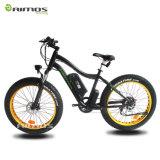 Bicyclette électrique chaude de la vente 36V 500W de modèle neuf