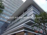 Los paneles incombustibles para el alto edificio de la subida