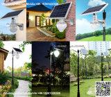 屋外壁の土台のための太陽エネルギーの機密保護の通りの庭ライト