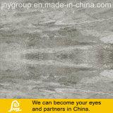Telha de pedra cinzenta da porcelana de Digitas da veia para o assoalho e a parede