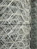 Het elektro Gegalvaniseerde Hexagonale Opleveren van de Draad voor Kooi