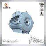 Aluminium van de Producten van de kwaliteit het Chinese 7075 T6 Geschilderde AutoLichaamsdelen