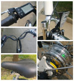 후방 허브 모터 250W 전기 도시 자전거
