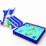 De opblaasbare Dia van het Water van de Haai met het Zwembad van de Grond
