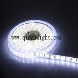 Ultrabright, alta qualità, una striscia dei 5050 LED Flexibe, con 20-22lm 5050 SMD