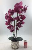 L'orchidea viola artificiale dei commerci all'ingrosso pianta la decorazione