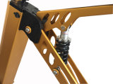 фабрика 250W поставляет Bike 3 колес электрический складывая