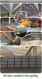 중국에 있는 가득 차있는 바디 600X600mm Basatina 세라믹스 지면 도와 제조자