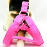 Pilha recarregável LED brilhante Cão Pet Cat Leash de Segurança do Chicote