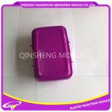 Plastikeinspritzung-Kasten-Klipp-Form