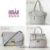 Trendy Pu de Zak van de Hand van Dame Handbags Brand Designer Women Pluche (z-014)