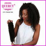 Les prix usine 2016 vendent le cheveu crépu d'enroulement de Vierge péruvienne