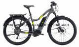 كهربائيّة درّاجة درّاجة مع [ليثيوم بتّر/] مدينة [إ] درّاجة /Fat إطار العجلة [إ] درّاجة ([س-2705])