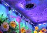 75W Innen-LED Wand-Unterlegscheibe-Stab-Licht für Stadium mit Cer
