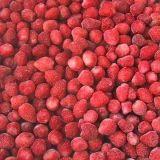 IQF Expoert fraise de bonne qualité pour