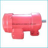Rechte motorreductoren met roze kleur voor Client maat