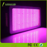 100PCS X 10W LEIDENE van het 1000W groeit de Volledige Spectrum Installatie Licht