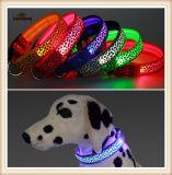 Diodo emissor de luz do chicote de fios de /Dog da trela de /Dog de 6 colares de cão do diodo emissor de luz das cores (KC0118)