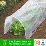 Eco-Friendly парник полиэтиленовой пленки малый растет тоннель для садовничать