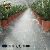 Anti stuoia resistente dell'erba tessuta pp, stuoia del Weed, stuoia di controllo di Weed per agricolo/giardino/il prato inglese