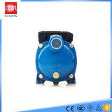 Pompa ad acqua centrifuga a più stadi elettrica per servizio dell'acqua potabile