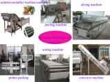 Légumes Fruits la pomme de terre de Lavage machine de traitement de séchage de nettoyage (WS)