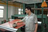 Fabricante del panel de Acm ACP
