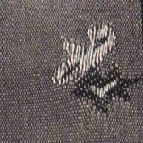 Tessuto di cotone tinto del poliestere di T/C del jacquard per il vestito dalla camicia dell'indumento