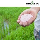 Meststof van de Korrels van de Stikstof van Kingeta de In het groot Organische voor Korpsen