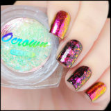 Unicorn paillettes de verre brisé holographique Nail Art mouchetures flocons transparent