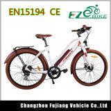 남자를 위한 디자인한 가득 차있는 현탁액 전기 자전거를 냉각하십시오