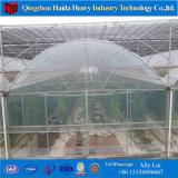 Парник тоннеля парника Hydroponic томата систем парника пластичный
