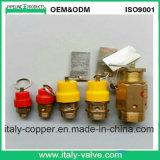 Válvula de escape de pressão de bronze do compressor de ar (AV-PV-1002)