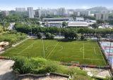 サッカー競技場(MDS60)のための反紫外線Fifaの人工的な泥炭の草