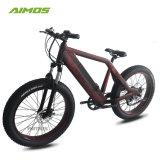 極度の涼しいモデルTdeストロンチウム48V 750W強力なMontainの電気自転車