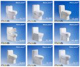 Cabinet d'une seule pièce de toilette en céramique normale de type (8006)